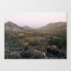 desert trails Canvas Print