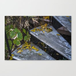 Autumn Steps Canvas Print