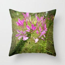 Pink Spikey Throw Pillow