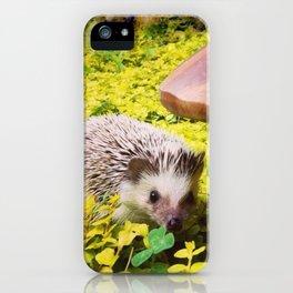 Juni Hedgehog Mushroom iPhone Case