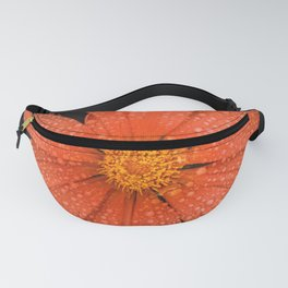 Orange Flower Fanny Pack