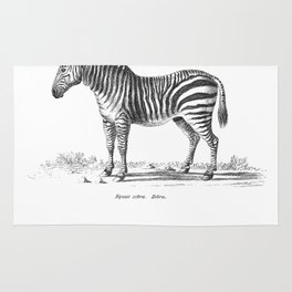 Zebra black and white retro drawing Rug