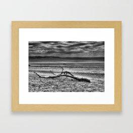 Driftwood 4 mono Framed Art Print