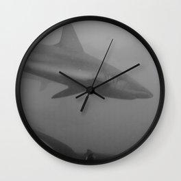 Galapagos sharks Wall Clock