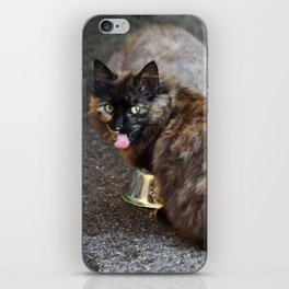 Brown and Grey (Two) Cat / Cats Eating Together iPhone Skin
