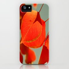 Orange Slim Case iPhone (5, 5s)
