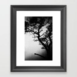 Tree in the fog Framed Art Print