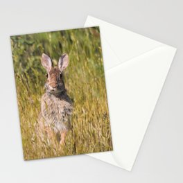 Cute and Curious Eastern Cottontail Rabbit in the Long Grass Stationery Cards