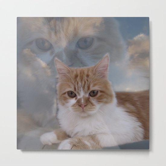 Dramatic Cat Face Metal Print
