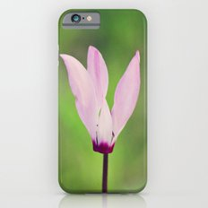 Pink Cyclamen iPhone 6s Slim Case