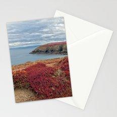 Irish Pomegranate Coast Stationery Cards