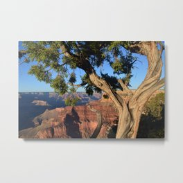 this canyon is grand. Metal Print