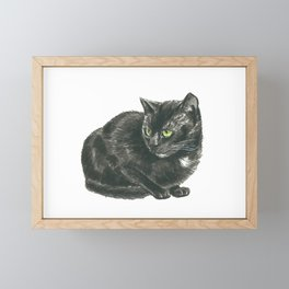 Black cat Framed Mini Art Print
