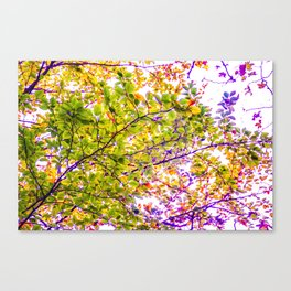 stylized branches Canvas Print