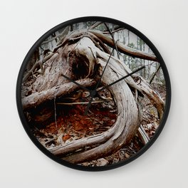 twisted roots, color photo Wall Clock