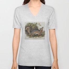 Vintage Illustration of a Grey Fox (1843) Unisex V-Neck
