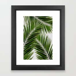 Palm Leaf III Framed Art Print