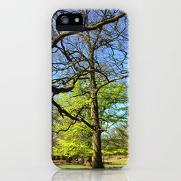 Spring In An English Park iPhone Case