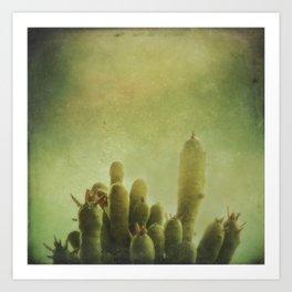 Cactus in my mind Art Print