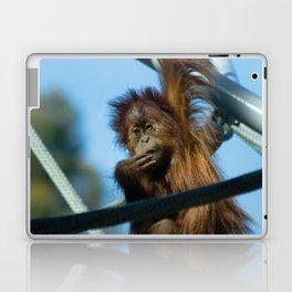 baby orangutan Laptop & iPad Skin