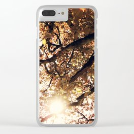 Golden Treetops Clear iPhone Case