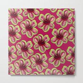 Geraldton Wax Flowers on dark pink Metal Print