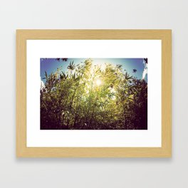 Bamboo in Blue & Green  Framed Art Print