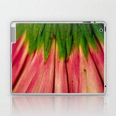 Petals of Pink Laptop & iPad Skin