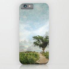 Windswept Tree on Barrier Island North Carolina Slim Case iPhone 6s