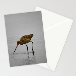 Marbled Godwit Stationery Cards