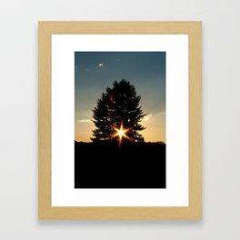 Starlight by Matthew Scrivner Framed Art Print