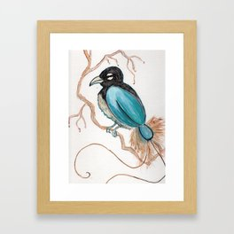 Bird of Paradise 4 Framed Art Print