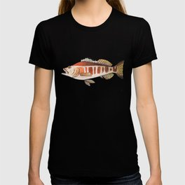 Blacktail Comber: Fish of Portugal T-shirt