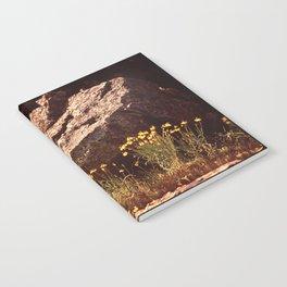 Central Texas - Near Lake Travis Notebook