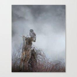 Gloomy Sunday Canvas Print