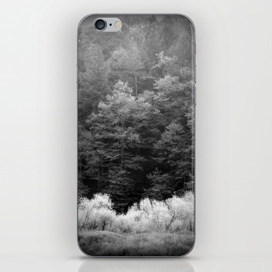The Forest Keeps Secrets iPhone & iPod Skin