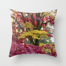 Acer Colours Throw Pillow