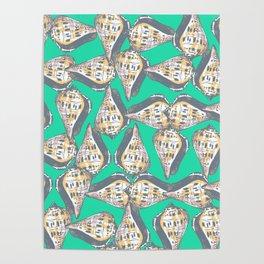 Seashells pattern Poster