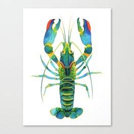 Red Claw Crayfish Lobster Canvas Print