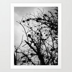 Spooky Tree Silhouette Art Print