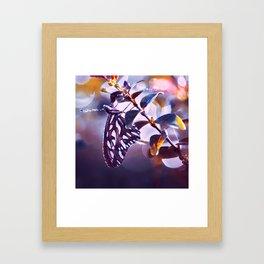 Silver Wings Framed Art Print