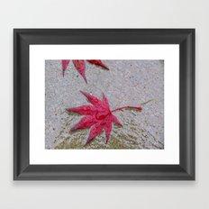 Wet Stars Framed Art Print