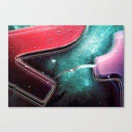 Winter Ice Canvas Print