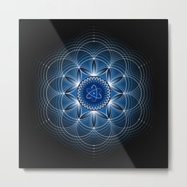 Metaphysics | Sacred geometry Metal Print