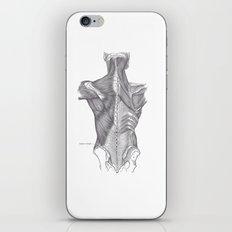 Anatomy iPhone & iPod Skin