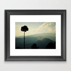 High as a tree Framed Art Print
