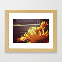 Orange Flowers Framed Art Print