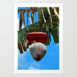 Hand-picked Treasure- vertical Art Print
