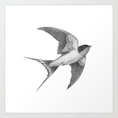 Barn Swallow - mono Art Print