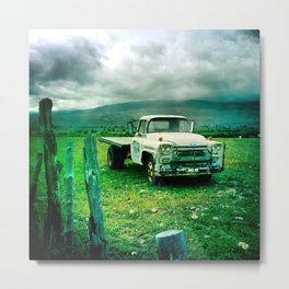 Out In The Field on a Stormy Mountain Day Metal Print